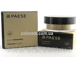 Paese Розсипчаста пудра Мінеральна (02) Mineral Powder Naturalny