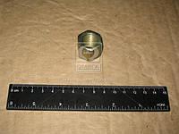 Гайка стремянки рессоры ЗИЛ 5301 (производитель Россия) 250691-П29