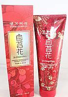 DAENG GI MEO RI Ja Dam Hwa Scalp & Hair Cleansing Shampoo+ Treatment Шампунь + Кондиционер 250мл