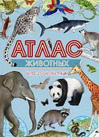 Атлас животных - Тумко И (978-617-690-001-6)