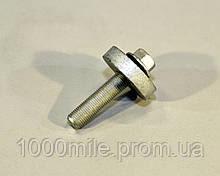Болт крепления шкива коленчатого вала на Renault Kangoo 2003->2008, 1.5dCi — RENAULT (Оригинал) - 8200367922