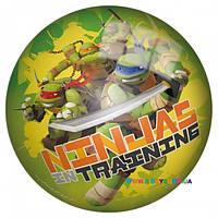 "Мяч ""Черепашки Ниндзя"", 23 см лицензия John JN57939"