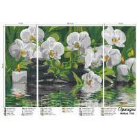 Ткань с рисунком для вышивки бисером Триптих Орхидеи (полная зашивка)