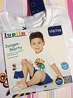 Набор детский футболка и шорты на мальчика Lupilu, 4-6 лет.