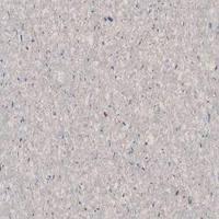 DLW Favorite PUR 726-051 shell grey гомогенный коммерческий линолеум