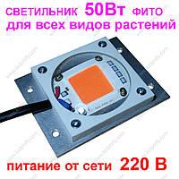 Фитоcсветильник для рассады 50Вт.  фито лампа, фитолампа для растений