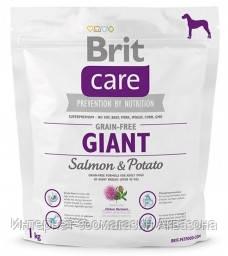 Brit Care GF Giant Salmon & Potato - 1 кг для собак гигантских пород с лососем