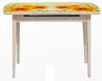 Кухонный стол-24В раздвижной с фотопечатью