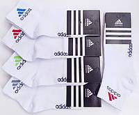 ORIGINAL Носки женские спортивные демисезонные х/б Adidas, Турция, средние, белые, 10077