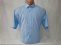 Мужская рубашка с коротким рукавом X - Port, Турция