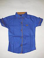 Рубашка для мальчика с коротким рукавом ARMANI р-р 6-11 лет