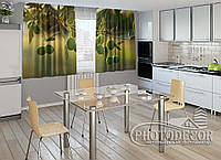"ФотоШторы для кухни ""Ветка оливок"" 1,5м*2,5м (2 половинки по 1,25м), тесьма"