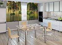 "ФотоШторы для кухни ""Ветка оливок"" 2,0м*2,9м (2 половинки по 1,45м), тесьма"