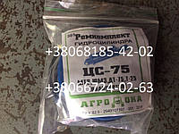 Ремкомплект гидроцилиндра ЦС-75 (МТЗ, ЮМЗ, ДТ-75, Т-25)