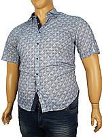 Мужская рубашка большого размера Negredo В-9070 Slim разных цветов