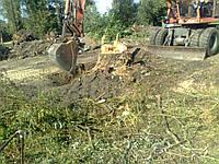 Очистка участка от деревьев. Вырубка древесно-кустарниковой растительности. Вырубка деревьев и кустарников.
