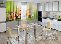 """ФотоШторы для кухни """"Франжипани"""" 1,5м*2,0м (2 половинки по 1,0м), тесьма"""