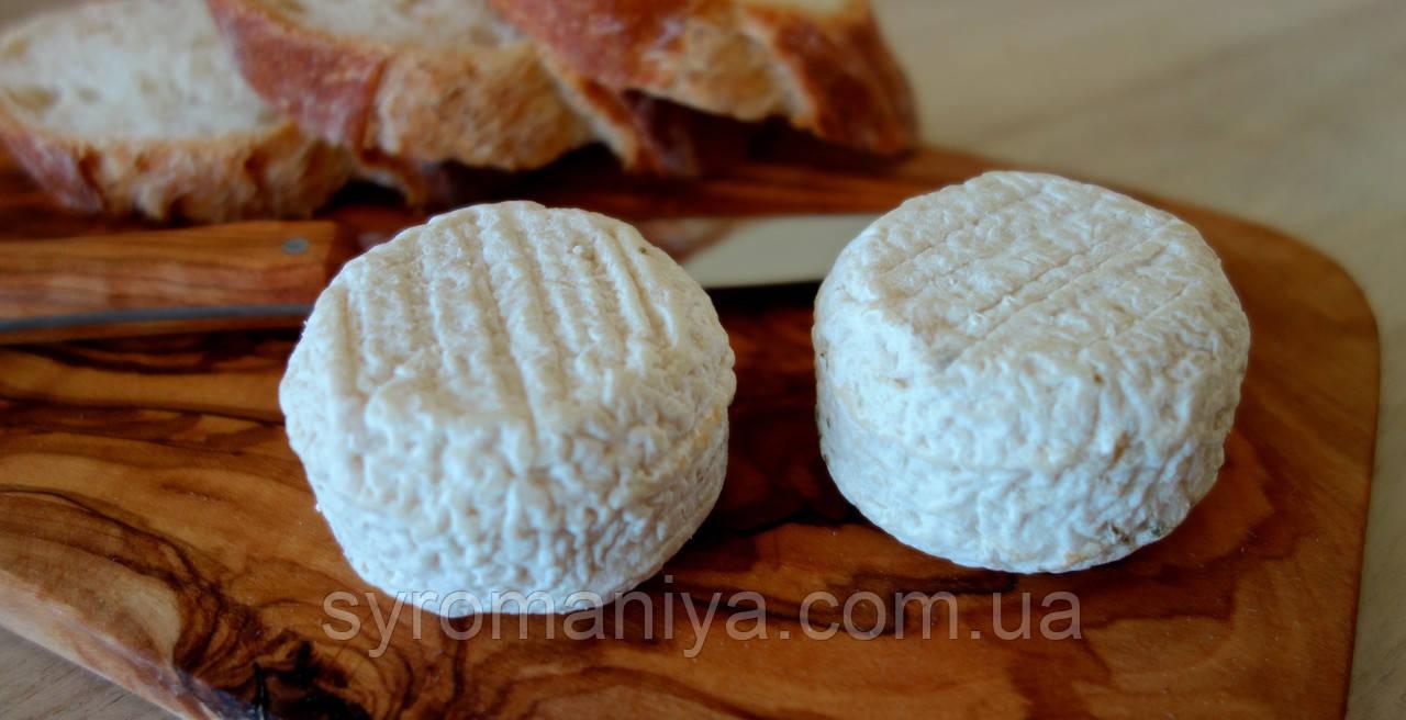 Закваска,фермент + плесень для сыра Кроттин