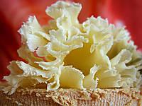Закваска,фермент + плесень для сыра Тет-де-Муан