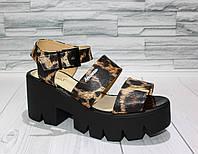 Стильные сандалии на платформе. Натуральная кожа. Тигриный принт. 312 1065