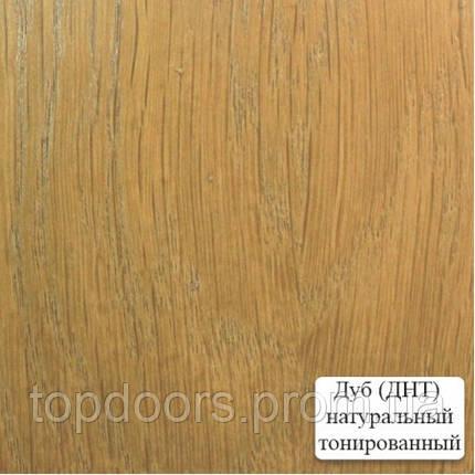 Полотно дверное шпонированое ТМ ОМИС Капри ПГ, фото 2