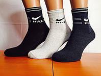 Носки мужские спортивные «Nike» 37-39р. Ассорти