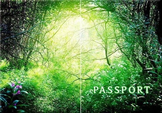 Обложка обкладинка на паспорт Абстракт природа цветы abstract України Украина Pasport