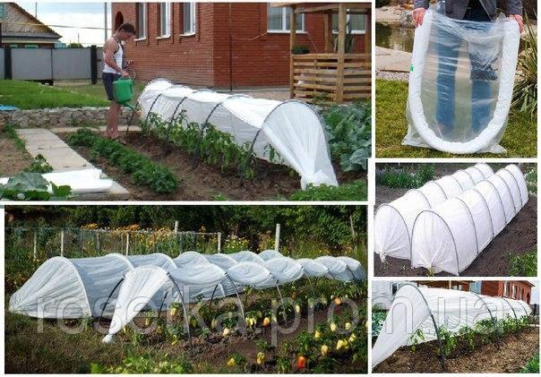 Готовий городній парник «Урожай» 8 метрів