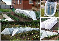 Готовий городній парник «Урожай» 8 метрів, фото 1