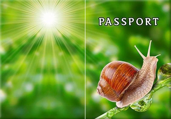 Обложка обкладинка на паспорт Улитка Равлик України Украина Pasport