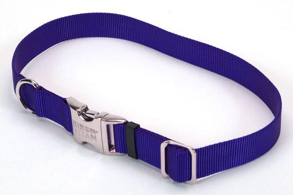 Coastal Titan Buckle ошейник для собак, 2смХ30-45см, синий