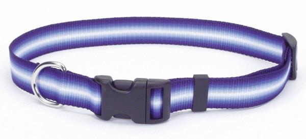 Coastal Trendz Graduated ошейник для собак, 1смХ30см, пурпурный