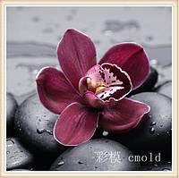 """Набор алмазной техники """"Цветок орхидеи"""""""