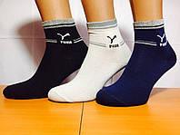 Носки спортивные 200 иголок  «PUMA» 41-45р. Ассорти
