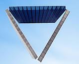 Стільниковий полікарбонат POLICAM прозорий 4мм 2,1*6м, фото 4
