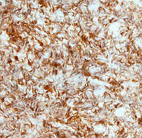 Жидкие обои № 906 белый с рыжим, фото 1