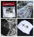 Павутина з павуками, біла, фото 3