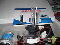 Купить ксенон Bosch H7 6000K