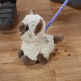 Интерактивный Забавный котёнок Ками друг щенка Пакса FurReal Kami My Poopin' Kitty Hasbro, фото 5