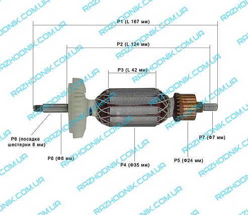 Якорь на болгарку Bosch GWS 11-125 (Аналог) , фото 2