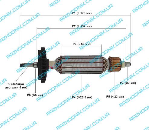 Якір на болгарку Bosch GWS 7-100 (Аналог), фото 2
