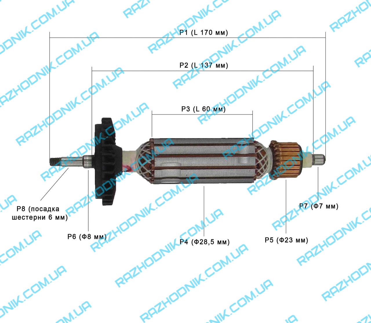 Якір на болгарку Bosch GWS 7-100 (Аналог)
