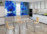 """ФотоШторы для кухни """"Синие орхидеи"""" 2,0м*2,0м (2 половинки по 1,0м), тесьма"""
