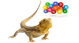 Витамины и добавки для рептилий