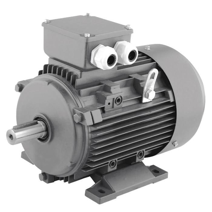 Электродвигатель Varna Y3-100L-2-3 - ДНЕПРОСТРОЙМАРКЕТ в Днепре