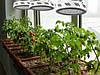 Лампа для растений 90W (10 полных спектров) - замена ДНАТ, ДНАЗ