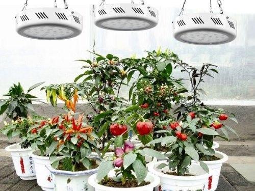 Фитопанель для растений 147W (49LEDx3W)