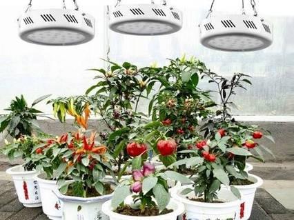 Фитопанель для растений 147W (49LEDx3W), фото 2