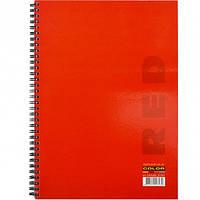Колледж-блок A4 Color 80л., клетка, спираль красный