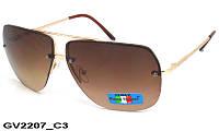 Солнцезащитные очки унисекс GV2207 C3